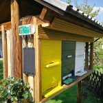 Top Tips for Keeping an Apiary
