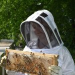 Beekeeper Jacket and Other Important Gear for Beekeepers